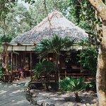 Foto de Jungle Jeanie's by the Sea