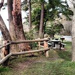 Best spots for picnics