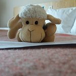 Foto de Hotel Euroopa