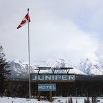 Photo de The Juniper Hotel