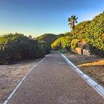 Photo de Table Mountain Walks