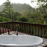 Tree house deck