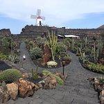 Photo of Jardin de Cactus