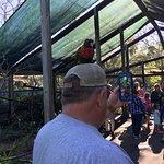 Foto de Tampa's Lowry Park Zoo