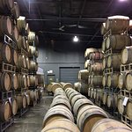 Just some of the barrels of wine