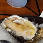 Mmmm....the best raw oysters I have ever had!