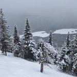 Powder days on the mountain
