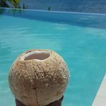 Coconut fresh from the tree outside our villa