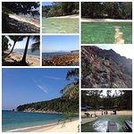 Rimba Resort
