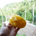 Photo de Coco Beach Island Resort