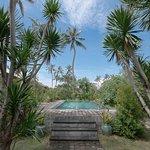 Lotus Bungalows Foto