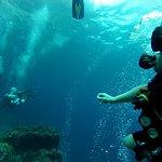 Photo of Kon-Tiki Krabi Diving & Snorkeling Center - Krabi