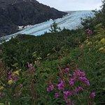 Photo de Exit Glacier Guides - Day Tours
