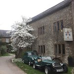 Lots to see and enjoy here in the Somerset countryside