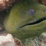 Foto di B&J Diving Centre