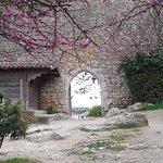 Obidos Village Foto
