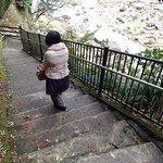吊橋手前までは車椅子で行けるがその先は階段があって難しいか