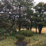 Kiyosumi Teien Foto