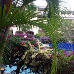 Foto de Bougainvillea Beach Resort