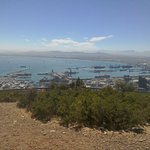 View of the port of Cape Town from Signal Hill