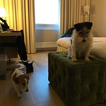 Photo of Quality Hotel Sundsvall