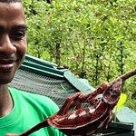 Photo de Lokobe Nature Special Reserve