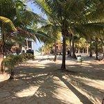 Isla Marisol Resort照片