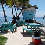 Trip to the Cayes