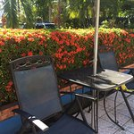 Foto de Hotel Carara