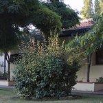 il giardino e le camere