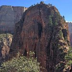 Photo de Angel's Landing