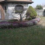 la casa ed i fiori