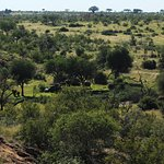 Photo of Mapungubwe National Park