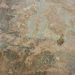 Petrogylph