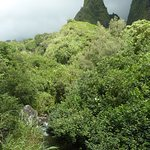 Iao Needle from trail