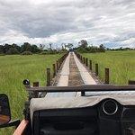 Access bridge to Jao Camp