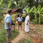 Meeting the man who collects the Toddy