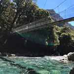Foto de Fiordland National Park (Te Wahipounamu)