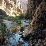 Hiking in a slot Canyon in the Black Canyon on the Colorado River with Evolution Expeditions
