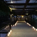 Walkway lined with candles.