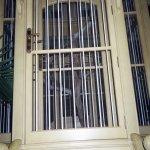 Huge golden bird cage in GF Lobby