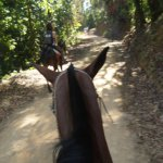 Horseback Ride to Nauyaca Waterfalls