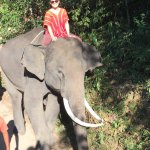 Photo de Patara Elephant Farm - Private Tours