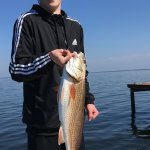 15-year-old caught a big redfish!