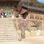 Photo de Le temple Beomeosa