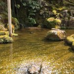 Ginkaku-ji (Tempel des Silbernen Pavillons) Foto