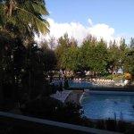 La vue sur la piscine au petit matin