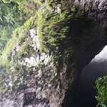 Foto de Natural Bridge