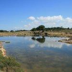 Isola di Mozia (Mothia)/ San Pantaleo Photo