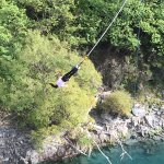 rewarding swing
